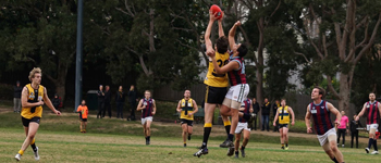 Rd 11 2018 Match Reports